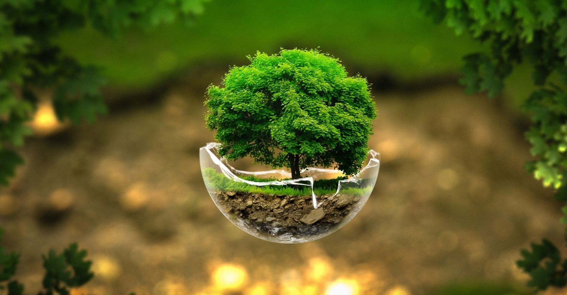 save_earth_plant_trees_broken_beautiful_3d_ultra_3840x2160_hd-wallpaper-1874626